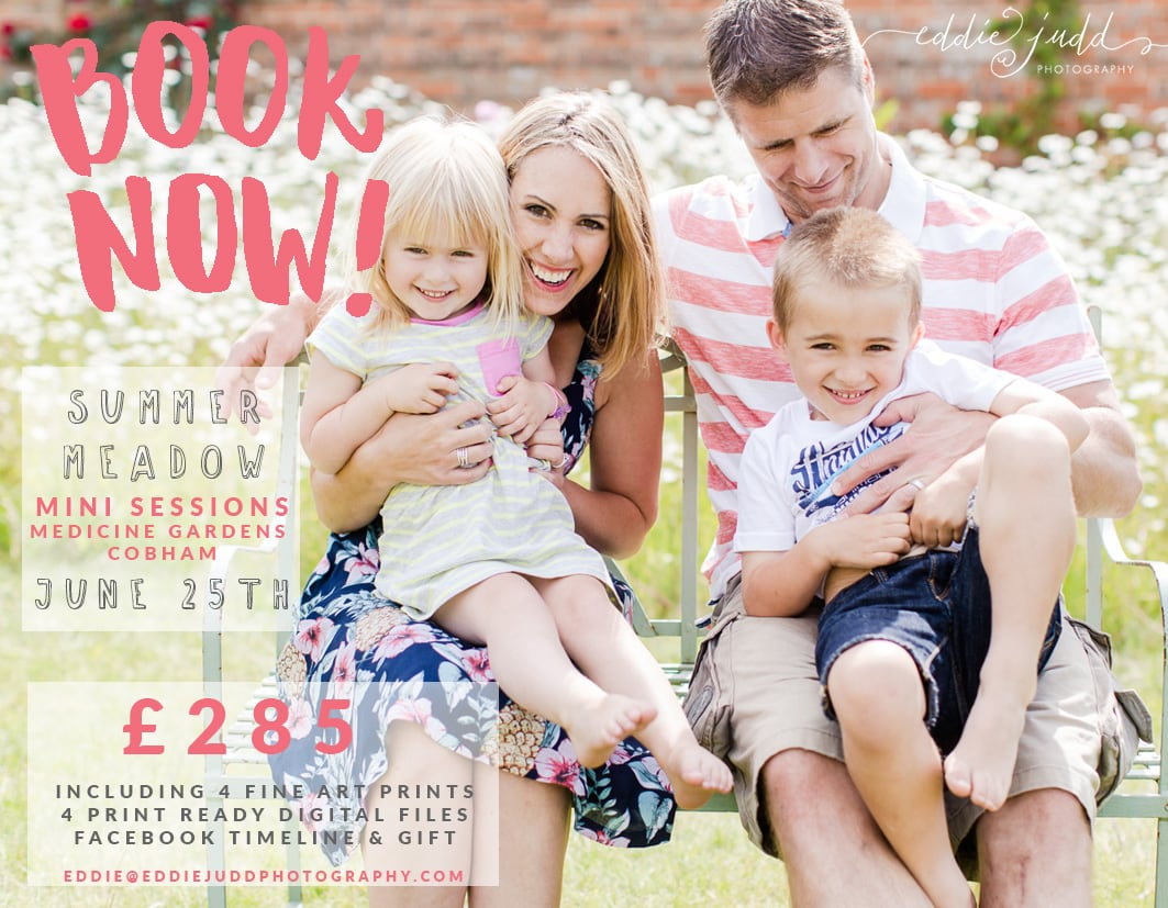 summer meadow mini sessions 2016