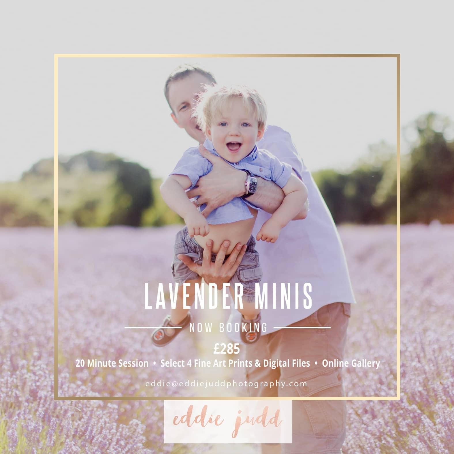 lavender mini sessions 2017