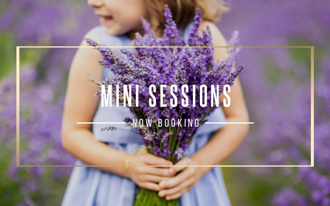 MINI SESSIONS – how do they work? how can I book?